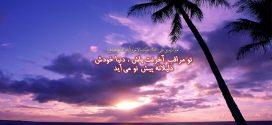 امیرالمومنین علی علیهم السلام: تو مراقب آخرتت باش ، دنیا خودش ذلیلانه پیش تو می آید